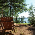 Cabin 6 view
