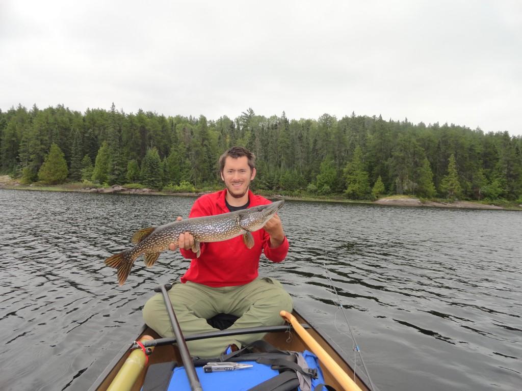 Northern Pike on Kawnipi Lake