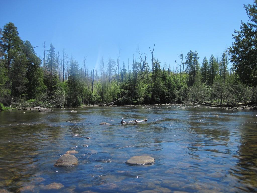 Boundary Waters Gunflint Trail Canoe Trip