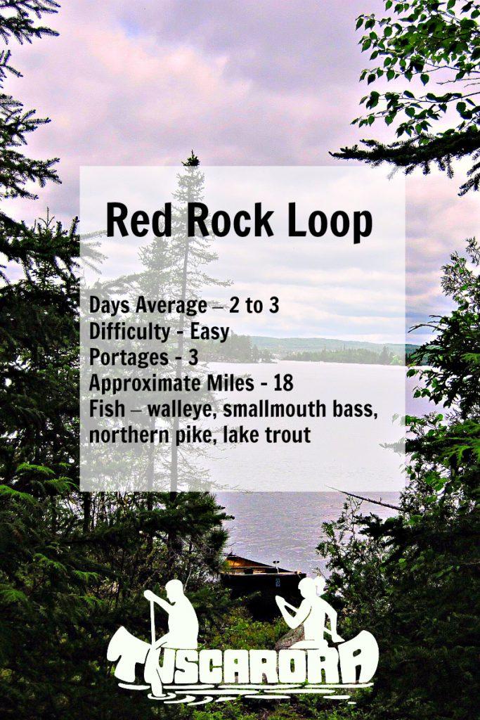 Red Rock Loop Pin