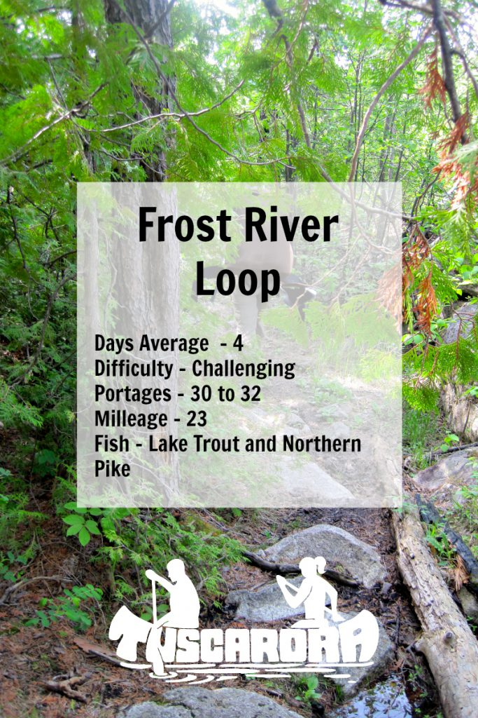 FrostRiverLoop Pin