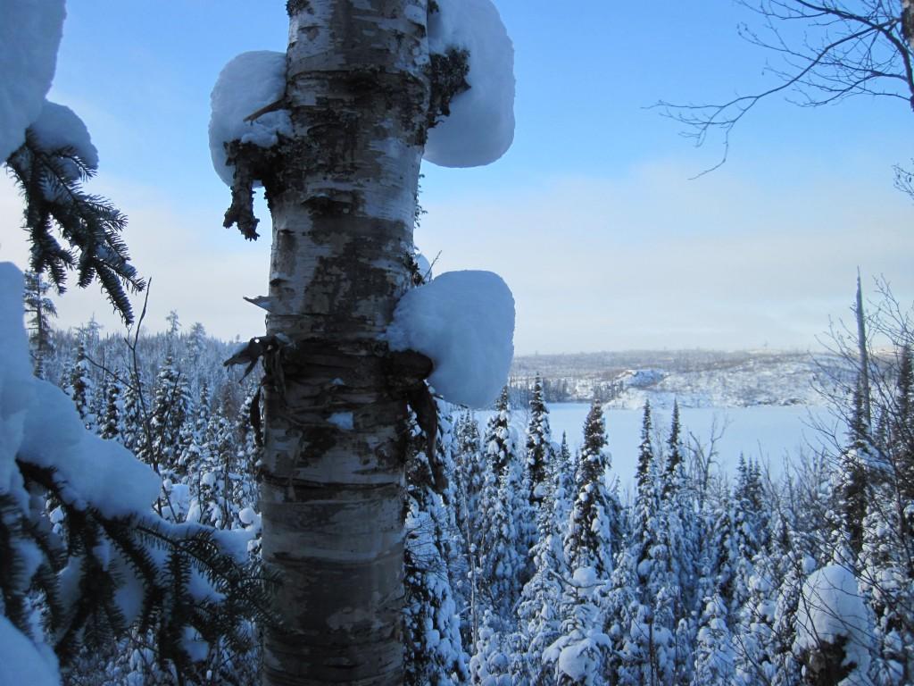 January Round Lake Gunflint Trail Boundary Waters winter trip