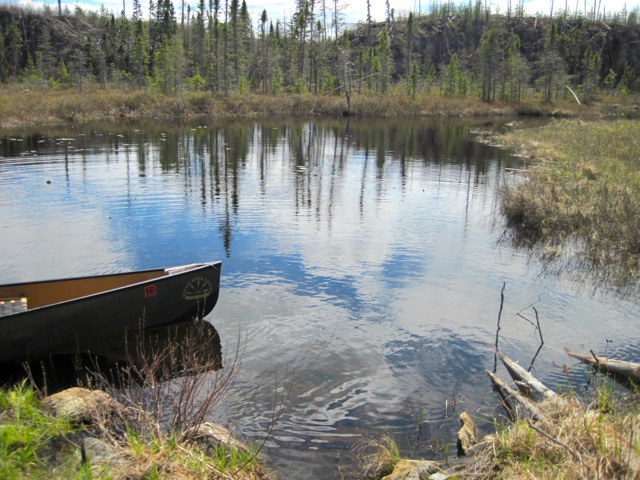 Spruce Bog south of J.A. Paulsen Lake in BWCAW
