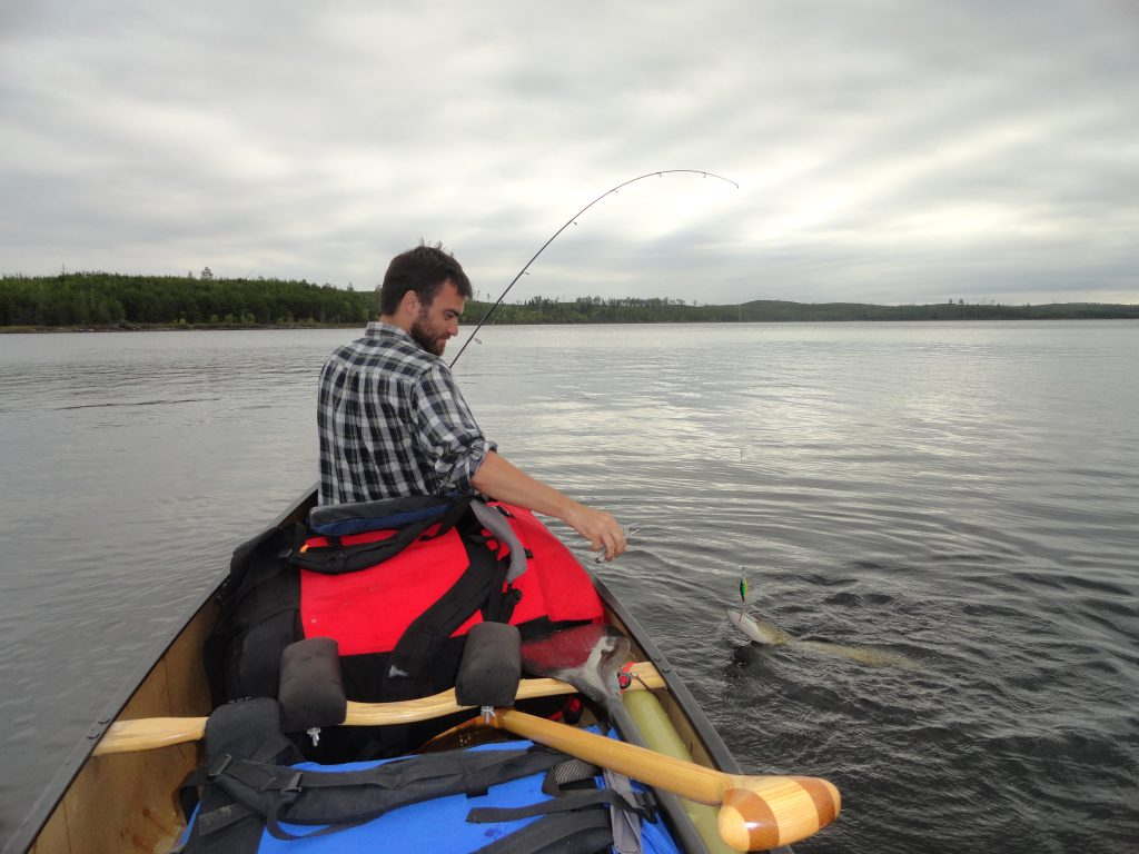 Quetico fishing for Northern Pike